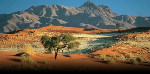 travel_Namibia